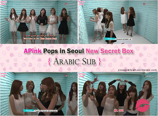 Apink New Secret Box